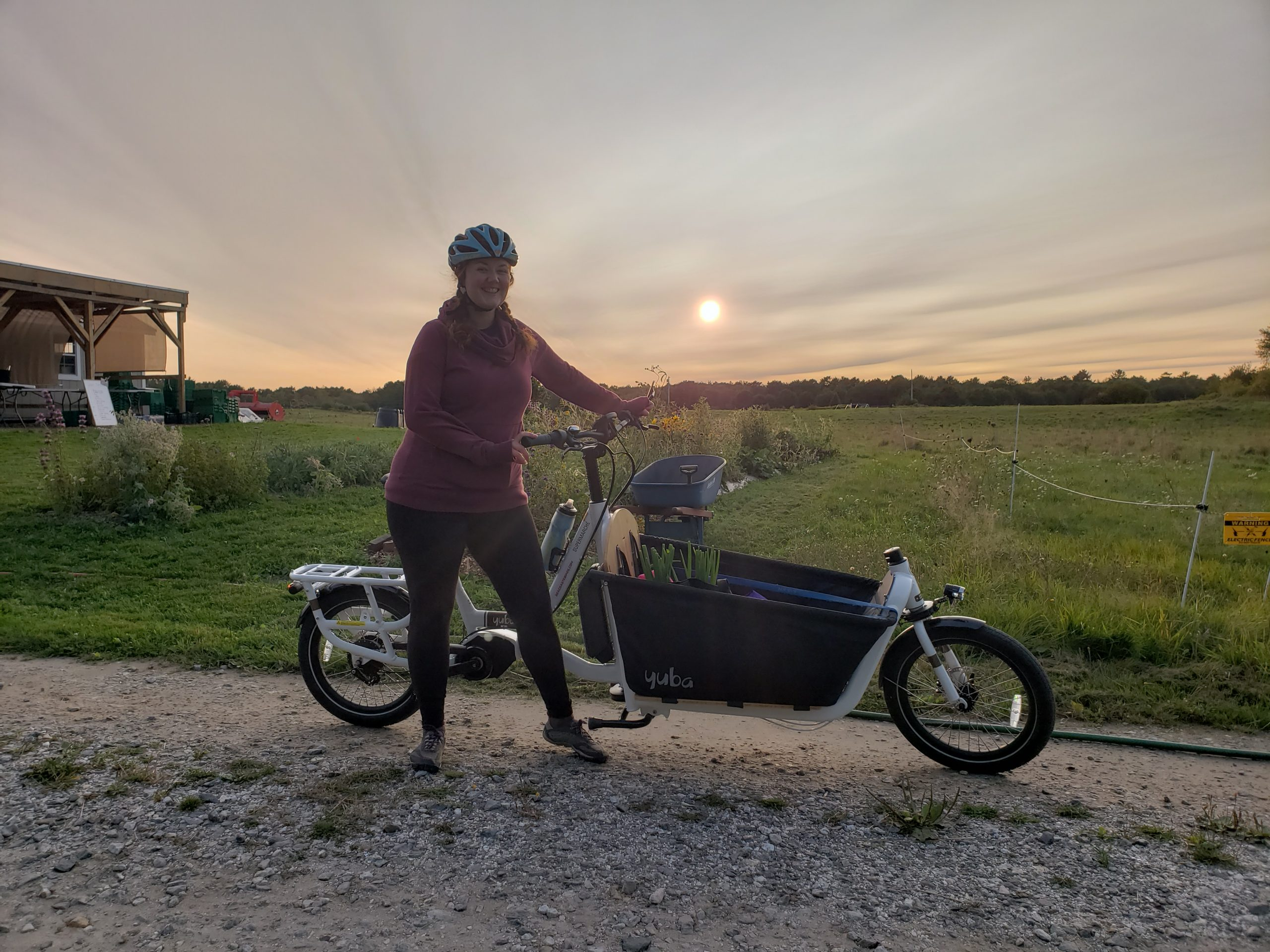 Yuba Cargo Bike Electric Supermarché Small Business